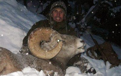 British Columbia – Bighorn Sheep