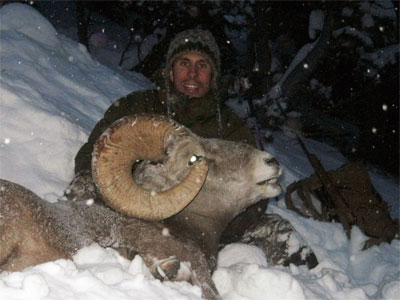 British Columbia – Bighorn Sheep