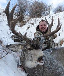 Alberta Canada – Mule Deer (Rifle)