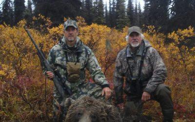 Alaska – Grizzly