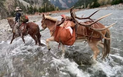 Wyoming ( Trophy Rifle Elk Hunt )