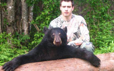 New Brunswick, Canada – Spring Black Bear